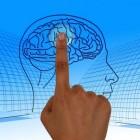 De invloed van internet op je hersenen
