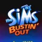 Nintendospel: De Sims – Erop uit!
